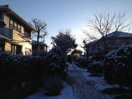 冬の自宅周辺