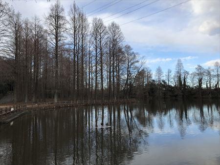 水辺の公園2